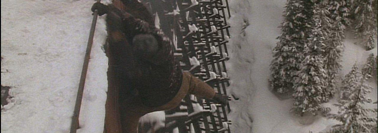 Photo du film : Le solitaire