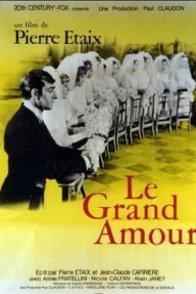 Affiche du film : Le grand amour