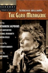 Affiche du film : La menagerie de verre