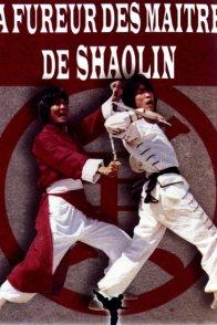 Affiche du film : La fureur des maitres de shaolin