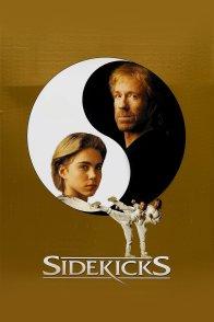Affiche du film : Sidekicks
