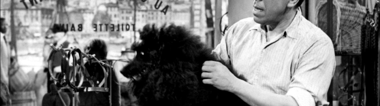 Photo du film : Coiffeur pour dames