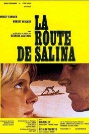 background picture for movie La route de Salina