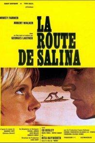 Affiche du film : La route de Salina