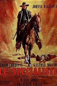 Affiche du film : Le specialiste