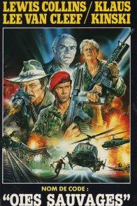 Affiche du film : Nom de code oies sauvages