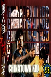background picture for movie Le Caïd de Chinatown
