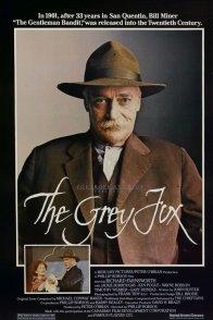 Affiche du film : The grey fox