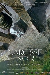 background picture for movie Narcisse