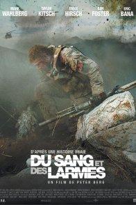 Affiche du film : Du Sang et des larmes