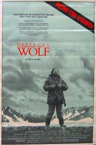 Affiche du film : Un homme parmi les loups