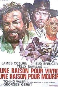 Affiche du film : La horde des salopards