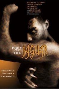 Affiche du film : La jaguar