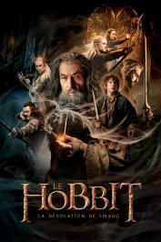 background picture for movie Le Hobbit : la Désolation de Smaug