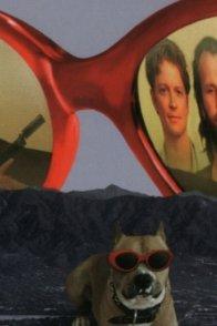 Affiche du film : 2 jours à Los Angeles