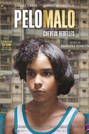 background picture for movie Pelo Malo