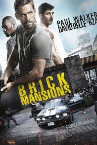 Affiche du film : Brick Mansions