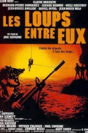 background picture for movie Les loups entre eux