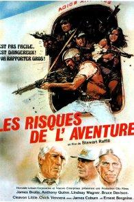 Affiche du film : Les risques de l'aventure