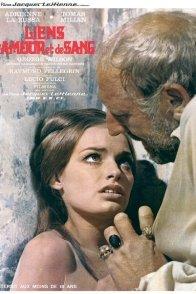 Affiche du film : Liens d'amour et de sang