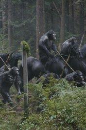 background picture for movie La Planète des Singes : l'affrontement