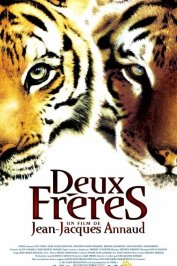 background picture for movie Deux frères