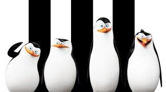 Affiche du film : Les Pingouins de Madagascar