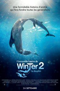 Affiche du film : L'Incroyable Histoire de Winter le dauphin 2