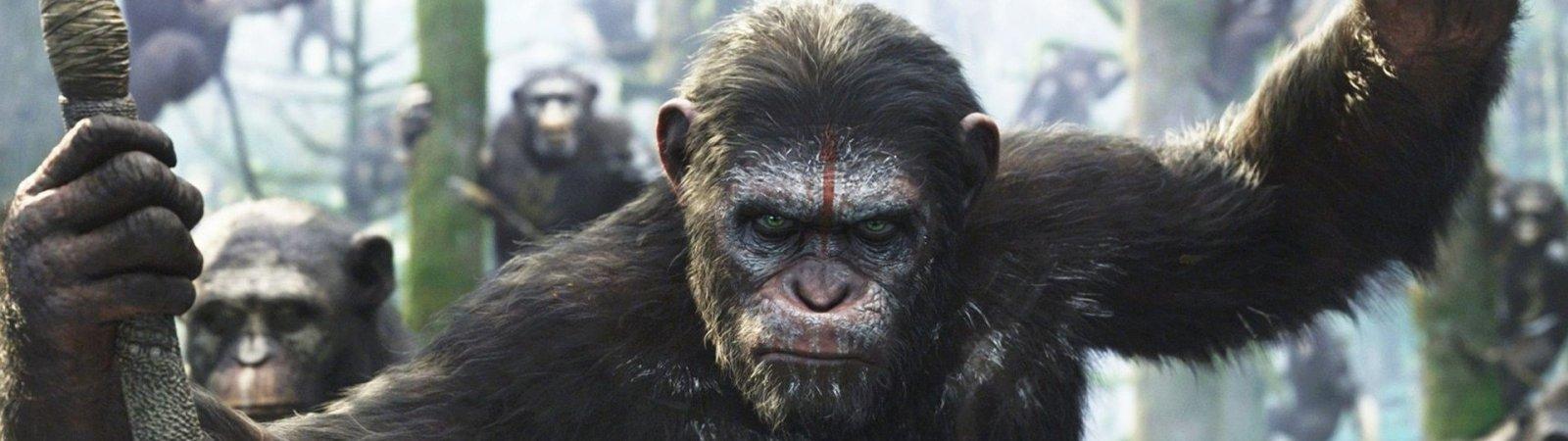 Photo du film : La planète des singes : l'affrontement