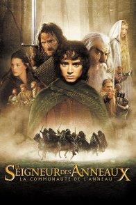 Affiche du film : Le seigneur des anneaux : la communauté de l'anneau