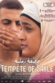 background picture for movie Tempête de Sable