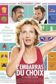 Affiche du film : L'Embarras du choix