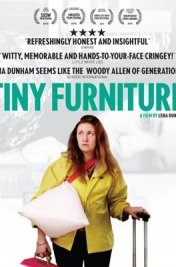 Affiche du film : Tiny Furniture