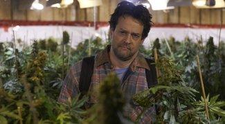 Affiche du film : Les mauvaises herbes