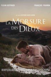 background picture for movie La morsure des dieux