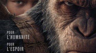 Affiche du film : La planète des singes - Suprématie