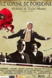 background picture for movie Le Consul de Bordeaux