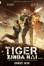 background picture for movie Tiger Zinda Hai