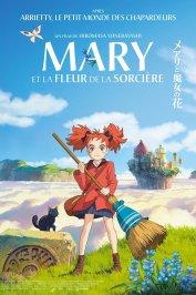 background picture for movie Mary et la Fleur de la sorcière