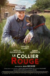 background picture for movie Le Collier rouge