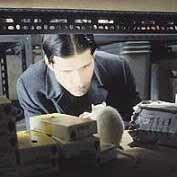 background picture for movie Willard