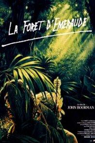 Affiche du film : La foret d'emeraude