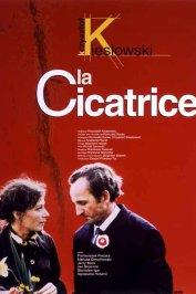 background picture for movie La cicatrice