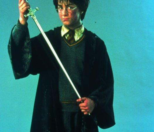 Photo du film : Harry Potter et la chambre des secrets