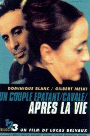 background picture for movie Après la vie