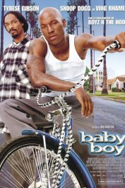background picture for movie Baby boy