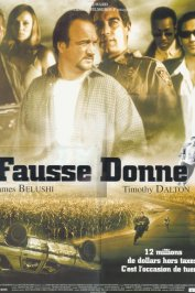 background picture for movie Fausse donne