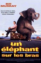 background picture for movie Un elephant sur les bras