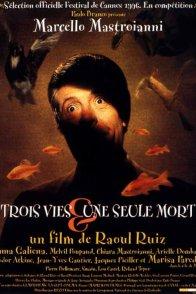 Affiche du film : Trois vies et une seule mort