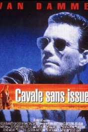 background picture for movie Cavale sans issue